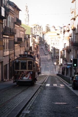 The Portuguese Ribeira - 2018