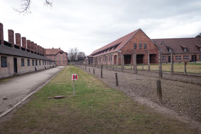 In to Auschwitz - 2017